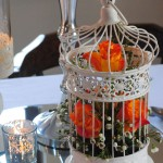 Decorative Cream Metal Bird Cage