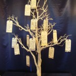 Striking Wish Tree